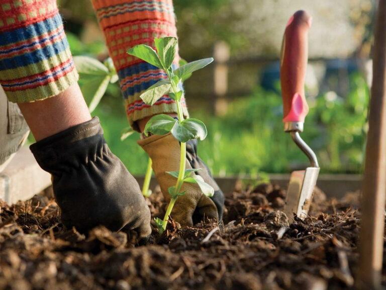 Компанія Престиж проводить основні ландшафтні роботи в весняний сезон